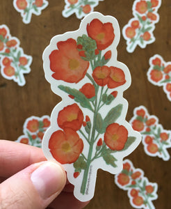Desert Globe Mallow Vinyl Sticker