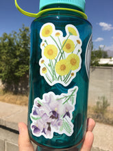 Load image into Gallery viewer, Wildflower Vinyl Sticker Pack of 6
