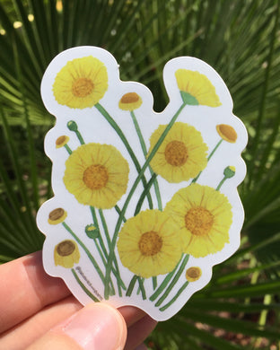 Vinyl sticker with desert marigold flowers in a watercolor design by Brushes and Boots