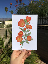 Load image into Gallery viewer, Desert Globe Mallow