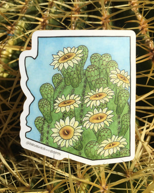 Vinyl sticker in the shape of Arizona with a watercolor painting of the top of a saguaro cactus with white blooming flowers.