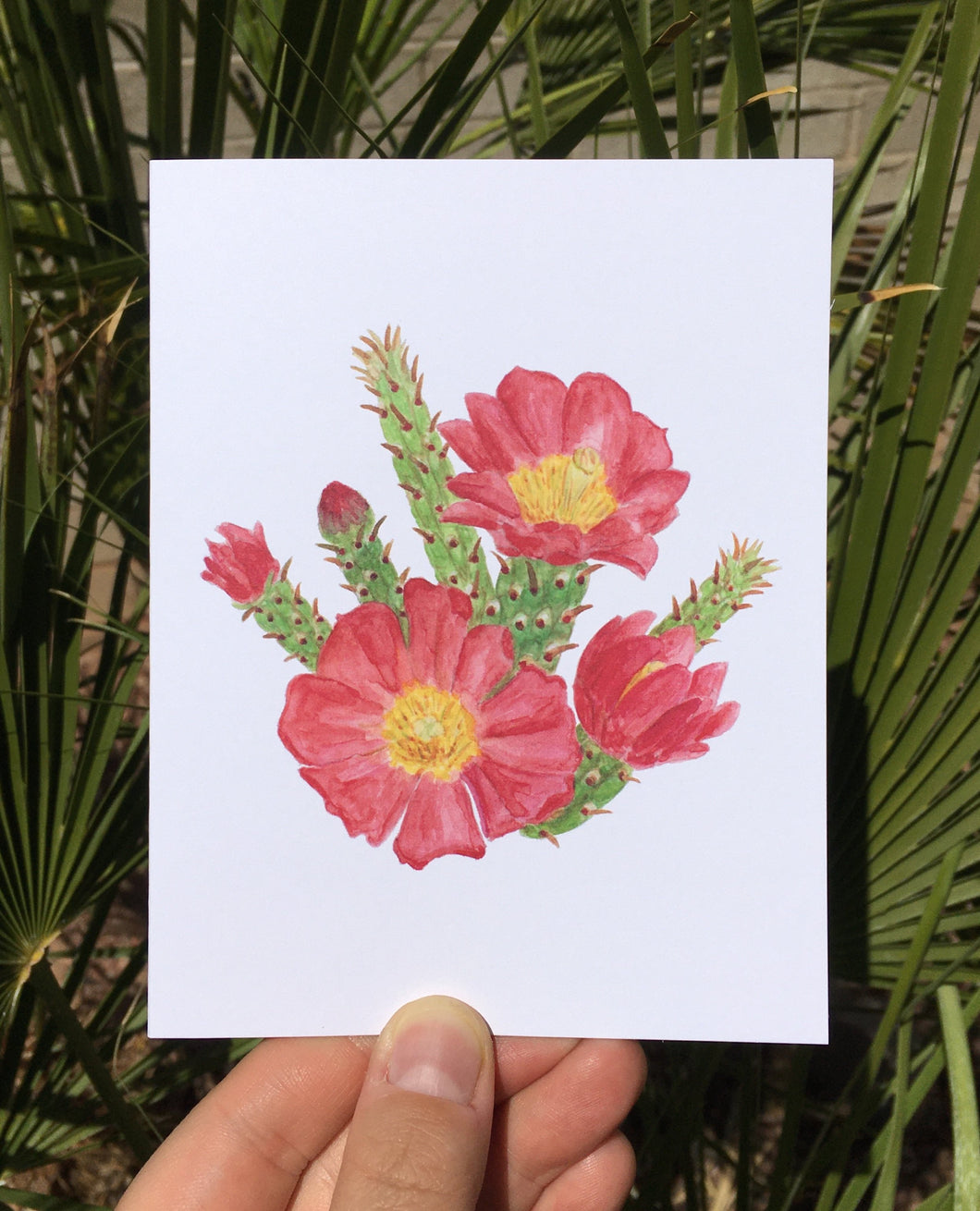 Staghorn Cholla Greeting Card