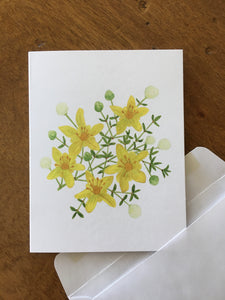 Creosote bush watercolor design by Brushes and Boots on an A2 greeting card