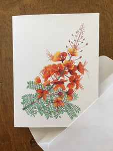 Red Bird of Paradise Greeting Card