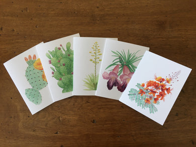 Desert Collection #1 - Greeting Cards (Set of 5)