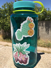 Load image into Gallery viewer, Prickly Pear Bloom Vinyl Sticker