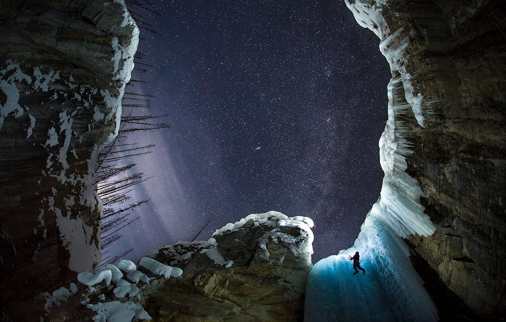 Cryophilla by Paul Zizka