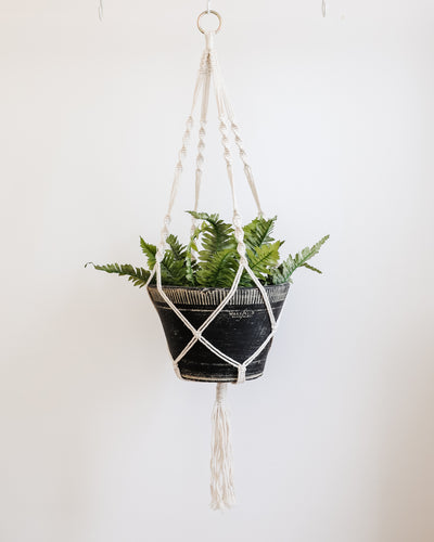 Your Favorite Macrame Plant Hangers