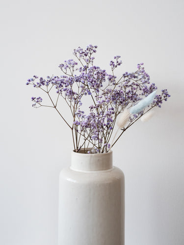 Preserved Baby's Breath - Purple Lace