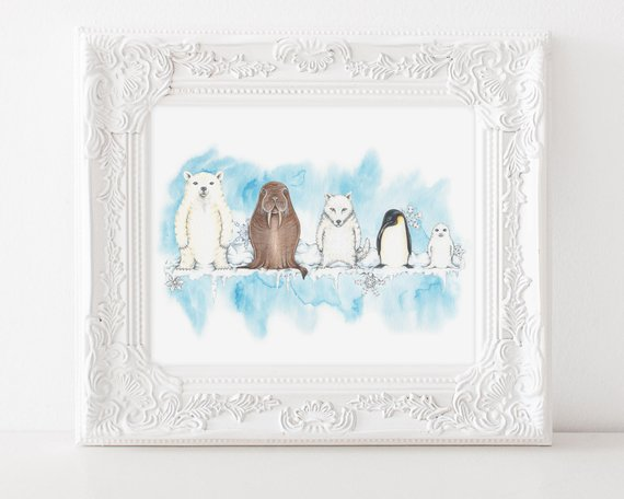 205 ($18) Animals - Snow