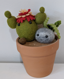 220 ($30) Pot - Cactus/Stone Softie