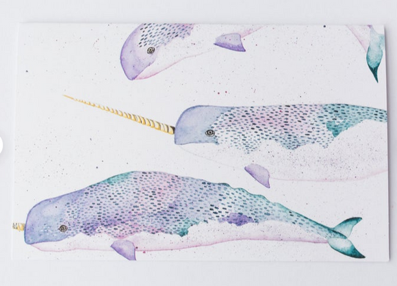 201 ($6) Card - Narwhals