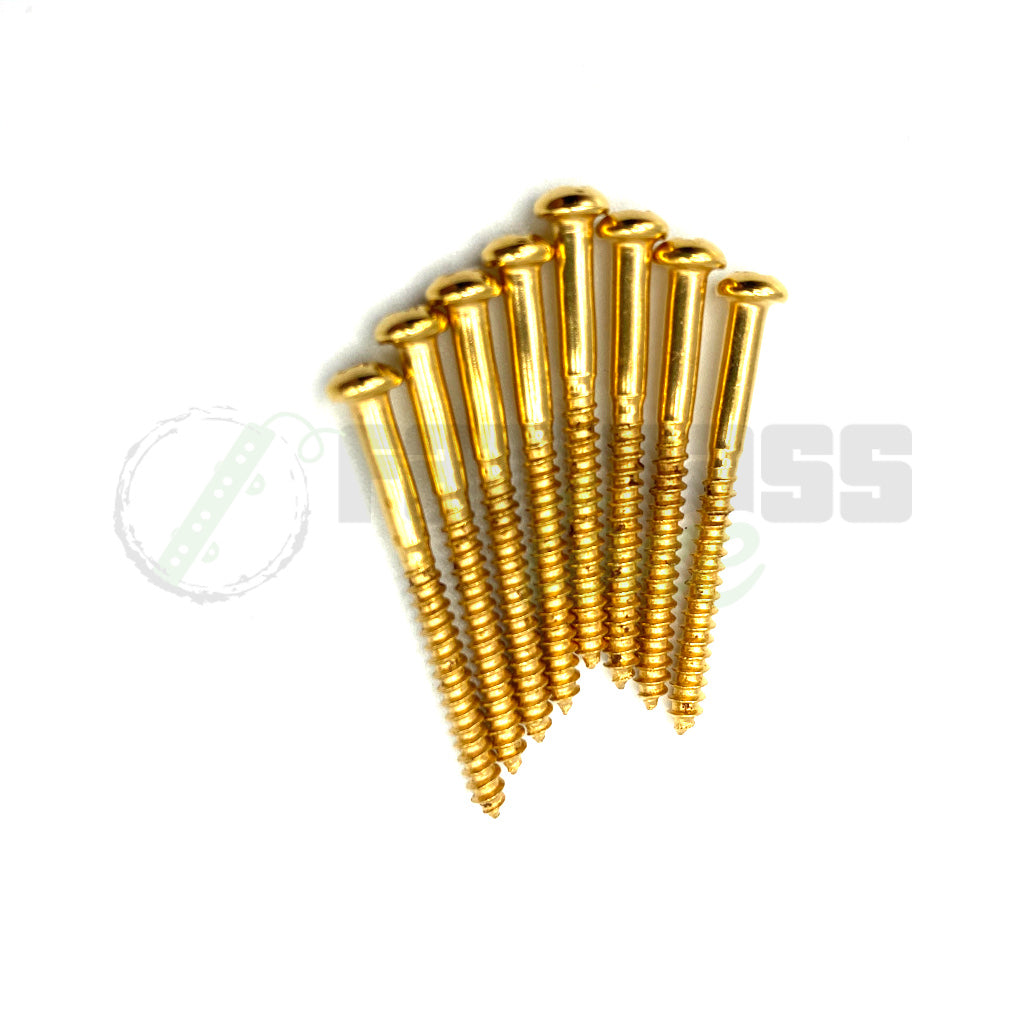 View of 8 Gold Pickup Screws