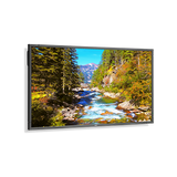 "NEC 70"" LED Backlit Commercial-Grade Display with Integrated Tuner"