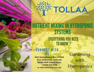 Nutrient Mixing In Hydroponic Systems | Everything You Need To Know