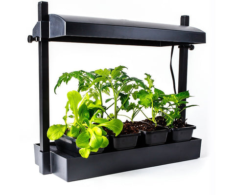 SunBlaster LED Growlight Garden, Black