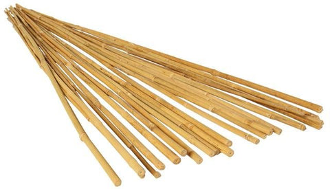 Grow!t 8'Bamboo Sticks Canes Plants Supports Pack 25