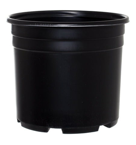 Pro Cal Thermo Pot Squat 3 Gallon