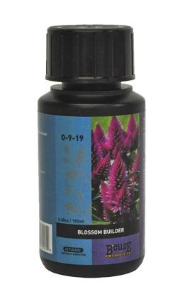 B'Cuzz Blossom Builder, 100 ml