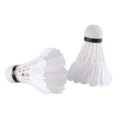 REIZ M6 Feather Shuttlecocks Professional Badminton Accessory 12PCS