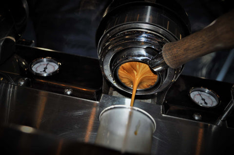 Espresso shot being pulled at Copper Door Coffee Roasters