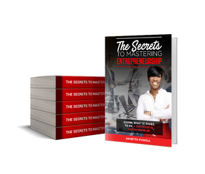 THE SECRETS TO MASTERING ENTREPRENEURSHIP - E-BOOK VERSION