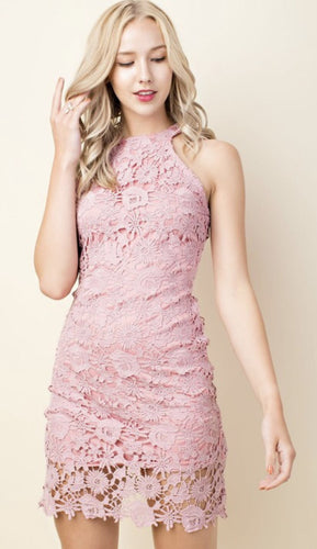 Dusty Rose Body Con Lace Dress