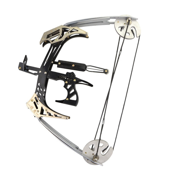 AMEYXGS Mini Compound Bow Kit and Arrow Set 25lbs Draw Weight for Fishing