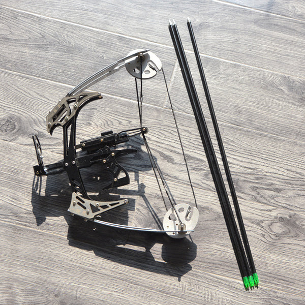 AMEYXGS Mini Compound Bow Kit and Arrow Set 25lbs Draw Weight for Fishing and Hunting with 3 pieces arrows