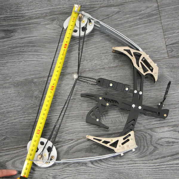 AMEYXGS Mini Compound Bow Kit and Arrow Set 25lbs Draw Weight for Fishing and Hunting