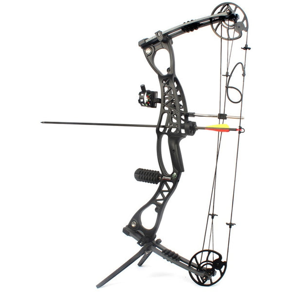 40-65 LBS Compound Bow for Hunting with 300 feet/s Arrow Speed with Accessories-Hue&Shades