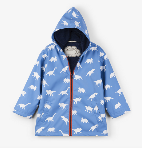Color-Changing Dinos Raincoat