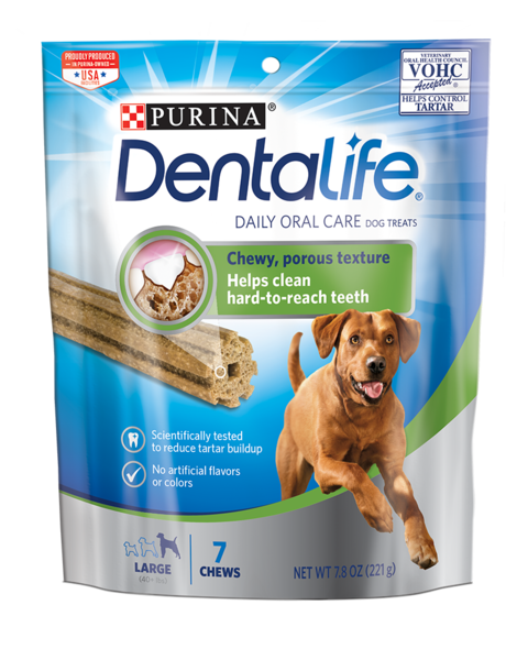 DentaLife Daily Oral Care Large 40+