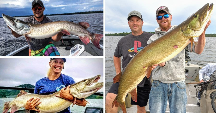Hot water debate (the other side) – Giant Musky Pics – Picking just ONE Rod....