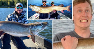 Overlooked Lures, Musky Memes & Art, Big Muskies that Look Tiny