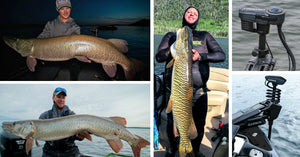 Muskies in Alaska??? – Killer LOTW Tips – Speared Trophy Musky 😥
