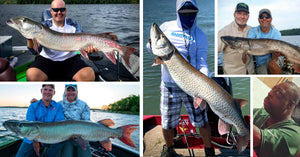 U-G-L-Y Muskies – Our Fav Musky Memes – Rare Esox Caught (BIG)