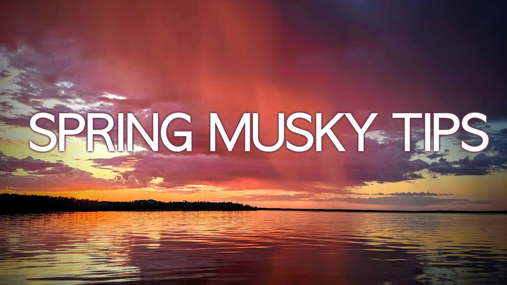 Early Season Musky Tips (Wind & Water Temp)