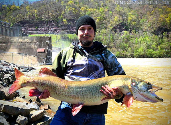Giant West Virginia Muskie