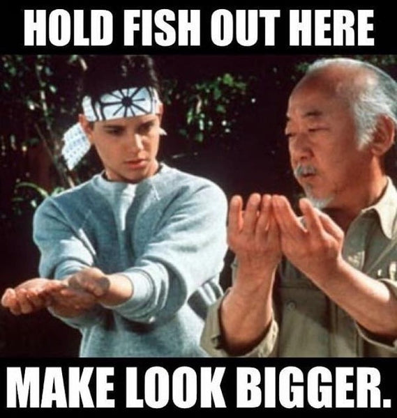 Hold Fish Out