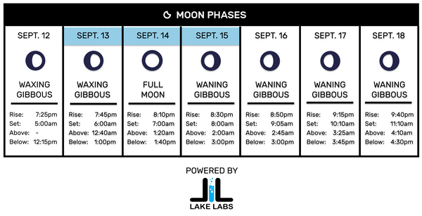 Lake Labs Lunar Chart