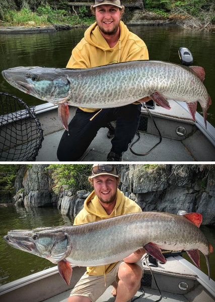 Lake of the Woods Musky