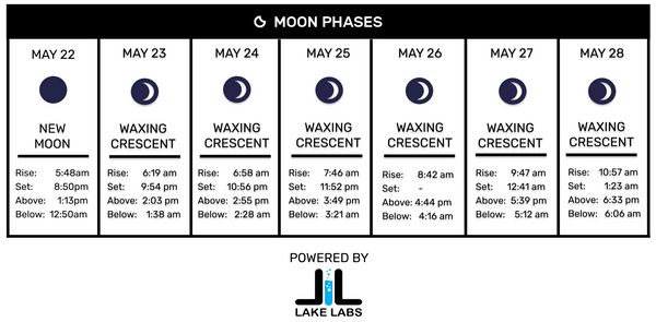 Moon Phase