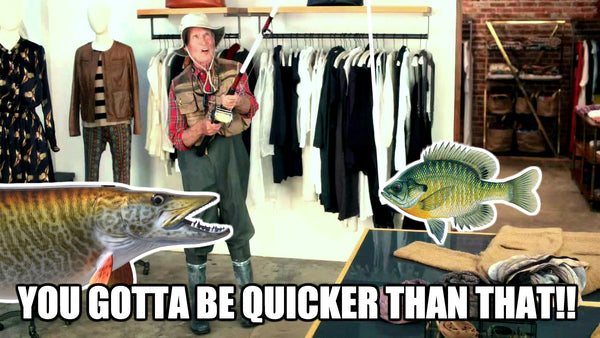 Musky Meme - Gotta be quicker