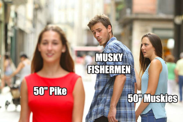 Musky & Pike Fishing Meme