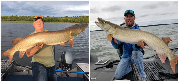two muskies