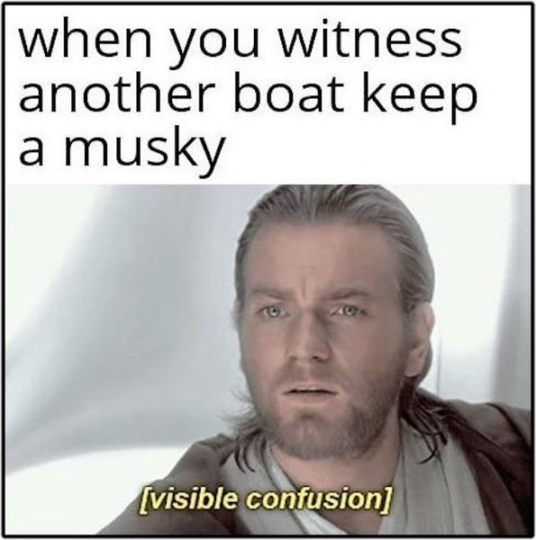 Visible Confusion
