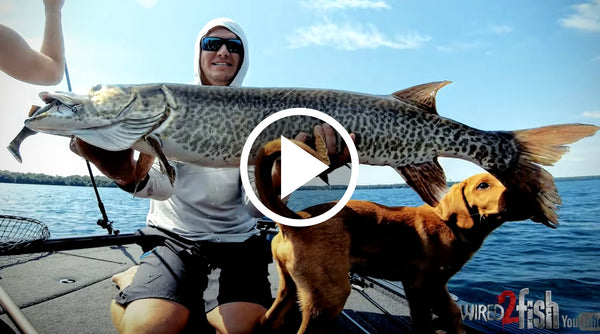 Wired2Fish Musky