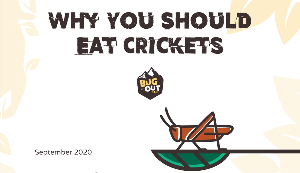 Why You Should Eat Crickets [Infographic]