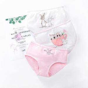 Baby Girl's Cute Cotton Briefs